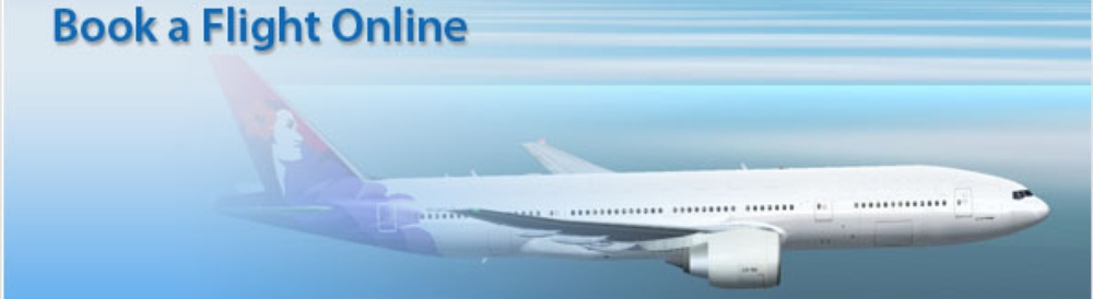 banner-flightbooking